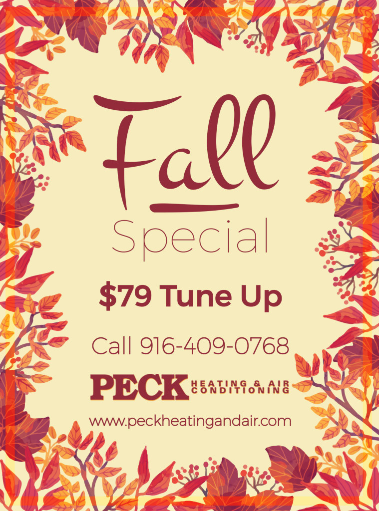 Peck Heating and Air Specials